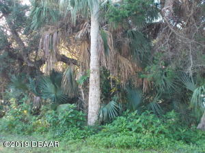 811 Locust Street, New Smyrna Beach, FL 32169