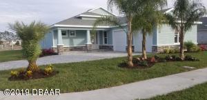 3069 Borassus Dr LOT 17, New Smyrna Beach, FL 32168