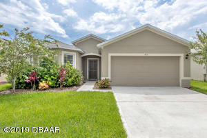 426 Pink Coral Lane, New Smyrna Beach, FL 32168