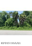 0 Umbrella Tree Drive, Edgewater, FL 32132