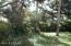509 S Pine Street, New Smyrna Beach, FL 32169