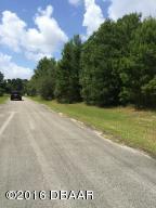 180 Mill Grant Road, DeBary, FL 32713