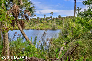 Property for sale at 0 Pine Bluff Trail, Ormond Beach,  Florida 32174