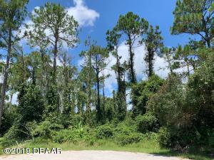 8 Zaharoff Place, Palm Coast, FL 32164