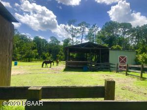 2508 Guava Drive, Port Orange, FL 32128
