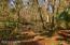 Spruce Creek waterway