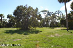 206 S Ridgewood Avenue, Edgewater, FL 32132