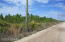 1160 Cty Rd 204, Hastings, FL 32145