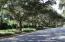Halifax Plantation, Acoma Drive Oak Canopy