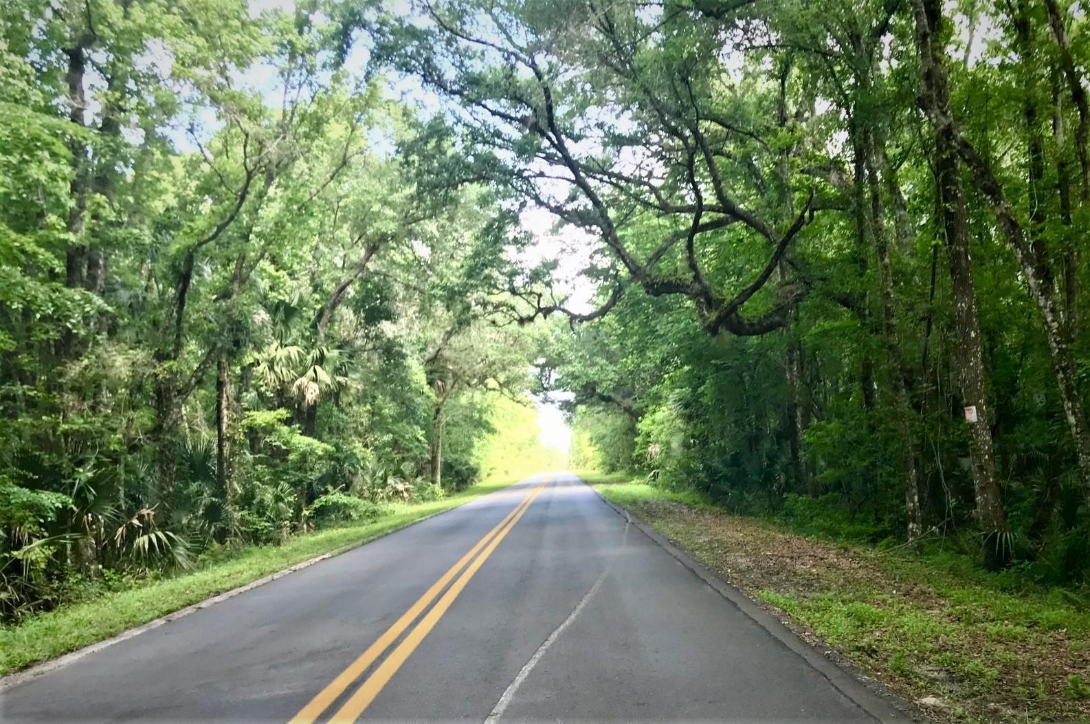 Image 32 For 425 Cherokee Oak Trail