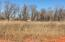 Beautiful residential lot in a subdivision of mature trees with a rural setting yet just a short drive to town.