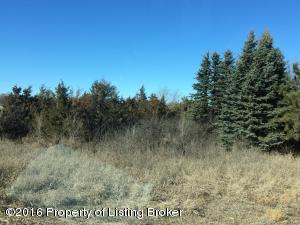 Residential lot with mature trees make this a great spot for your to build your new home. Prairie Woodlands