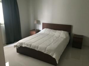 Apartamento En Alquileren Distrito Nacional, Paraiso, Republica Dominicana, DO RAH: 19-115