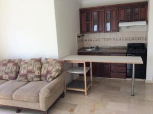 Apartamento En Alquileren Distrito Nacional, Piantini, Republica Dominicana, DO RAH: 19-1240