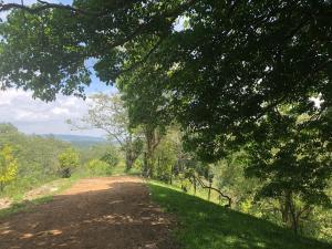 Terreno En Ventaen Jarabacoa, Buena Vista, Republica Dominicana, DO RAH: 20-951