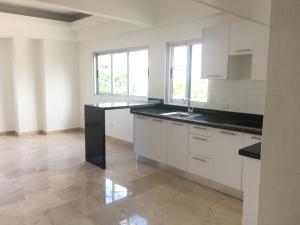 Apartamento En Alquileren Distrito Nacional, Evaristo Morales, Republica Dominicana, DO RAH: 21-363