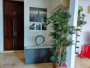 Apartamento En Alquileren Distrito Nacional, Piantini, Republica Dominicana, DO RAH: 21-365