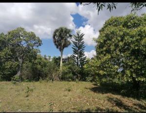 Terreno En Ventaen San Cristobal, Bajos De Haina, Republica Dominicana, DO RAH: 21-1926