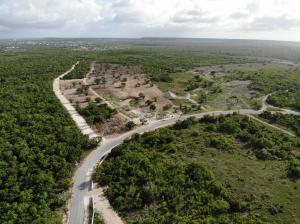 Terreno En Ventaen Punta Cana, Punta Cana, Republica Dominicana, DO RAH: 21-2503