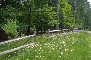 This lot currently has a split rail fence and wildflowers. This waterfront lot is a real find for anyone wanting a waterfront lot in Treasure Lake. There are not many waterfront lots left and this is a beauty.