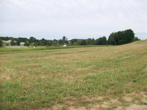 POINT AVE, Troutville, PA 15866