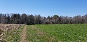 ROSELY RD, Saint Marys, PA 15857