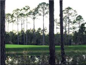 3510 Burnt Pine Lane, Sandestin, FL 32550