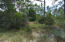 1 BUNKER PLACE Drive, Santa Rosa Beach, FL 32459