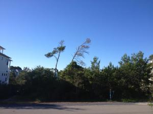 Lot 97 MORGANS, Santa Rosa Beach, FL 32459
