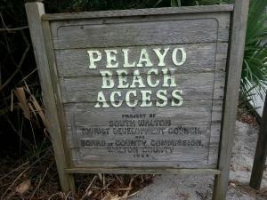 77 PELAYO Street, Santa Rosa Beach, FL 32459