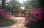 Azaleas in bloom by Fountain