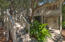 Shady porch and decks