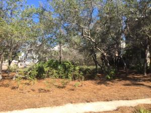 34 Rain Lily Lane, Santa Rosa Beach, FL 32459