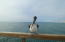 Pete the Pelican likes it here