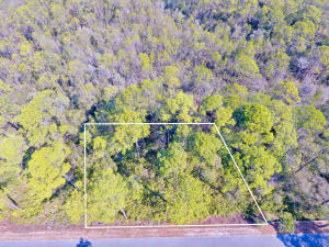 Aerial View Lot 52 Treetop