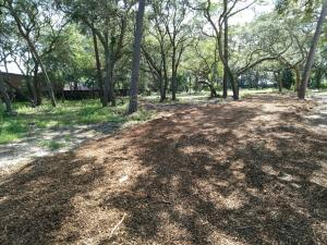 Beautiful treed commercial lot near the hospital and doctors' offices