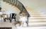 Limestone floors lead to this beautiful stairway