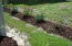 Recent landscaping at side yard