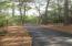Paved walking path