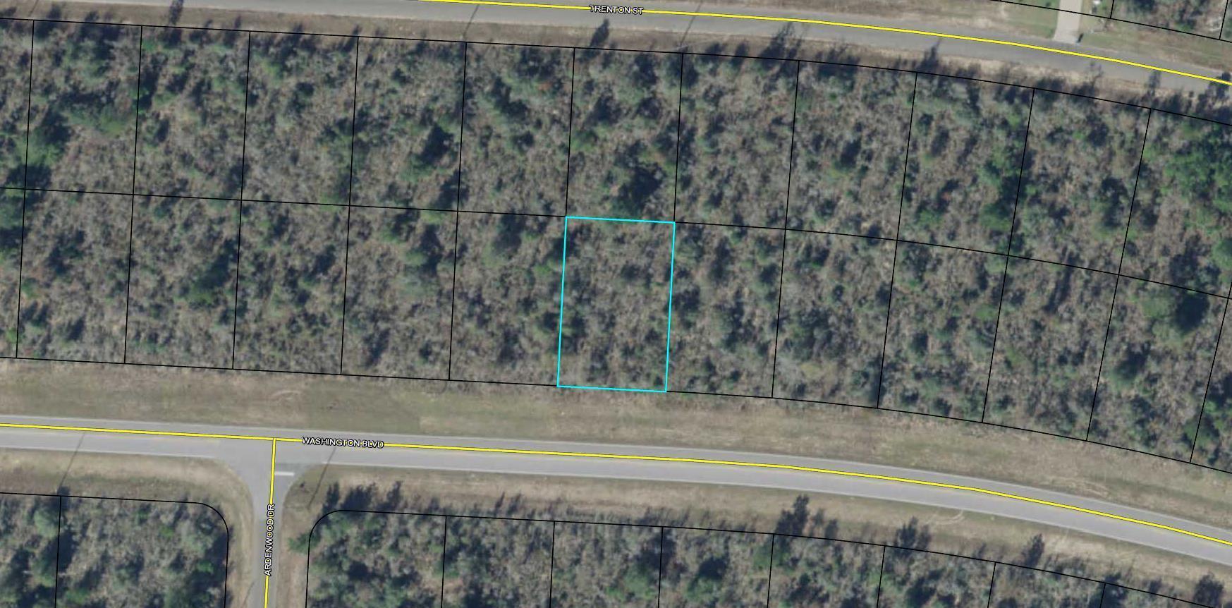 0.229 Acre WASHINGTON Boulevard, Chipley, FL 32428