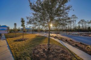TBD Sandgrass Boulevard, Lot 241, Santa Rosa Beach, FL 32459