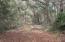 DMC walking trails
