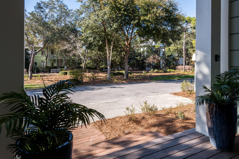 46 Mistflower Lane  Photo 73