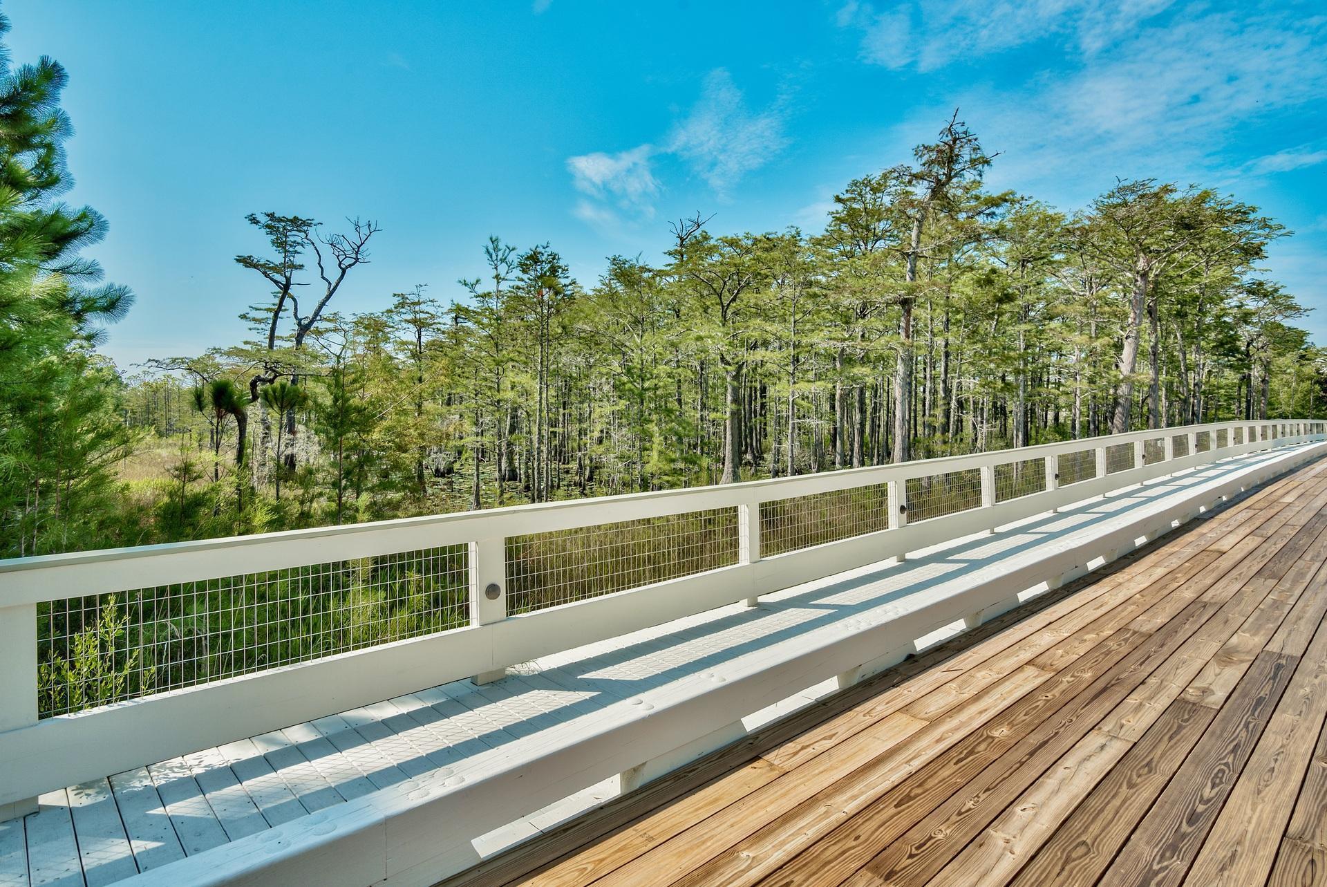 Cypress bridge over pond