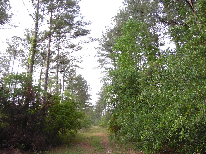 44 acres 4714 Co. Hwy 89, Florala, AL 36442