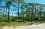 69 N Silver Maple Drive, Seacrest, FL 32461