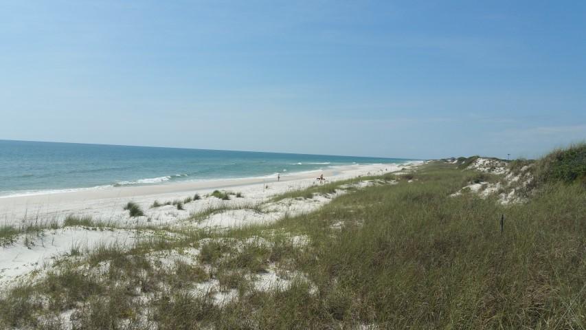 113 Hibiscus Beach Drive, Cape San Blas, FL 32456