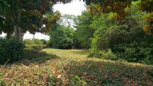 1834 Snapdragon Drive, Navarre, FL 32566
