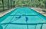 Gunite pool with dolphin inlays