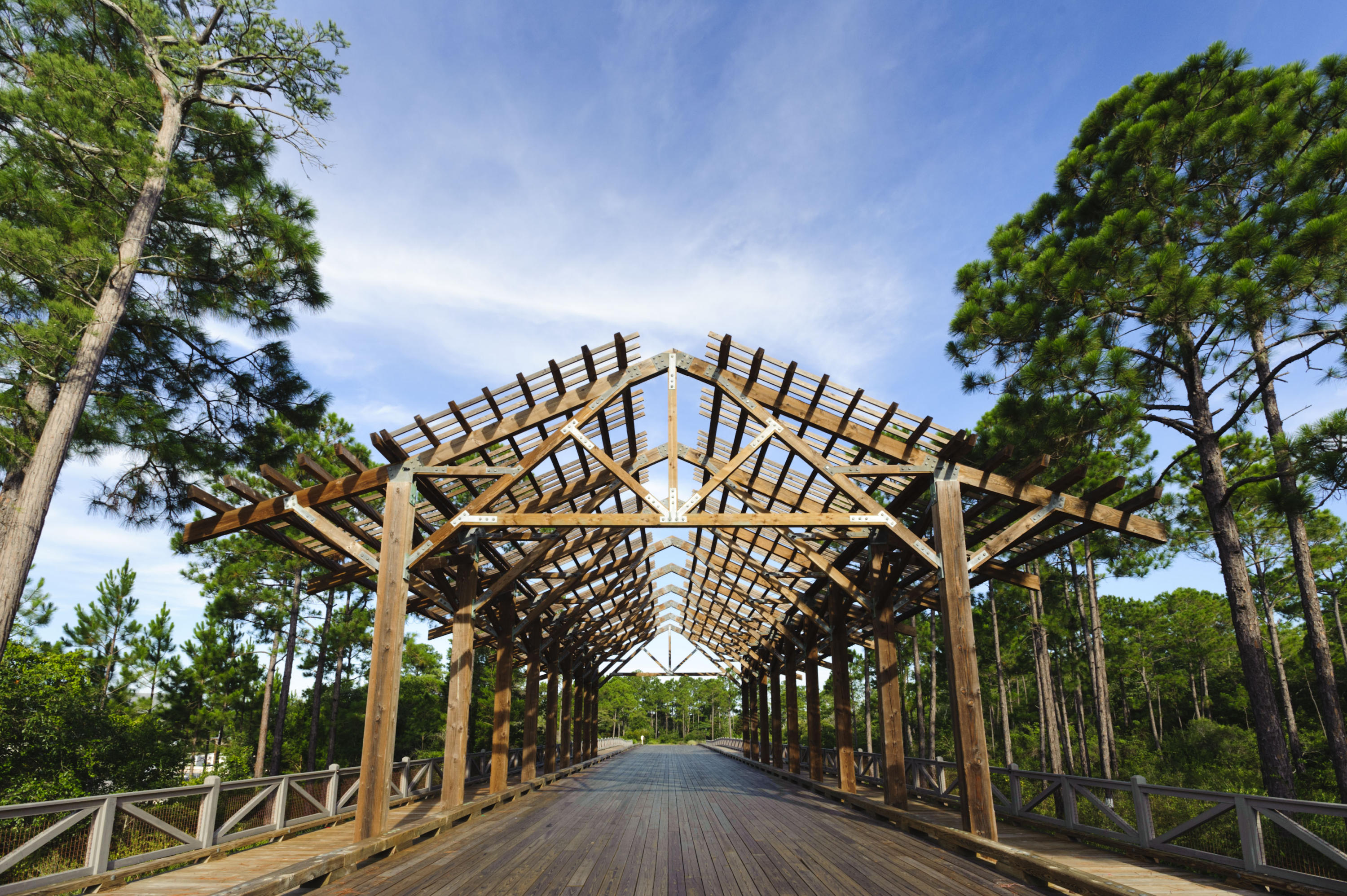 451 Flatwoods Forest Loop Lot 189 Photo 32